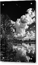 Silver Linings Acrylic Print by Marvin Spates