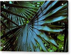 Silver Palm Leaf Acrylic Print by Susanne Van Hulst
