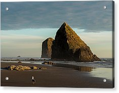 Silver Point Seastacks Acrylic Print