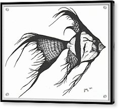 Silver Veiltail Angelfish Fish Art Acrylic Print by Cathy Peek