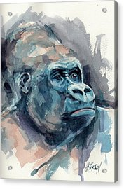 Silverback Gorilla Acrylic Print by Christine Karron