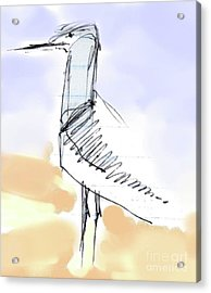 Acrylic Print featuring the drawing Simon by Carolyn Weltman
