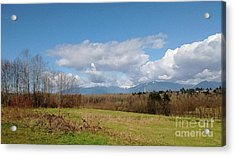 Acrylic Print featuring the photograph Simple Landscape by Bill Thomson