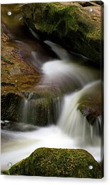 Acrylic Print featuring the photograph Simplicity by Timothy McIntyre
