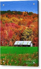 Simply Adirondack Acrylic Print by Diane E Berry