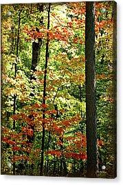 Simply Autumn Acrylic Print by Joan  Minchak