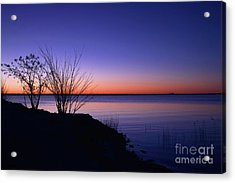 Simply Gentle Blue Acrylic Print