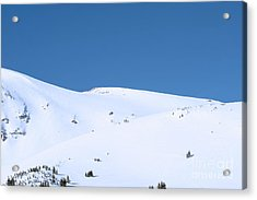 Acrylic Print featuring the photograph Simply Winter by Juli Scalzi