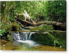 Sims Creek Waterfall Acrylic Print