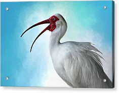 Sing, Sing A Song... Acrylic Print