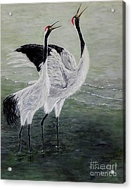 Singing Cranes Acrylic Print by Judy Kirouac