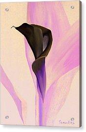 Single Calla Lily Acrylic Print by Linda Tenukas