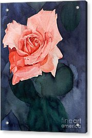 Watercolor Of A Magic Bright Single Red Rose Acrylic Print