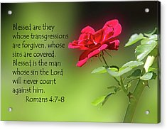 Single Red Rose Romans 4 V 7-8 Acrylic Print