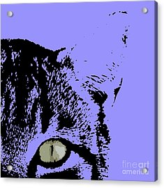 Sir Rodgerson On Purple Background Acrylic Print by Pablo Franchi