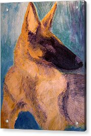 Acrylic Print featuring the painting Sirius Canis Major by Barbara Giordano