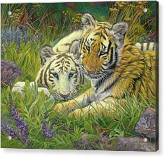Sisters Acrylic Print by Lucie Bilodeau