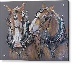 Sisters Whisper Acrylic Print by Carole Haslock