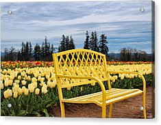 Sit And Enjoy Acrylic Print