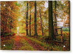 Acrylic Print featuring the photograph Site 6 by Dmytro Korol