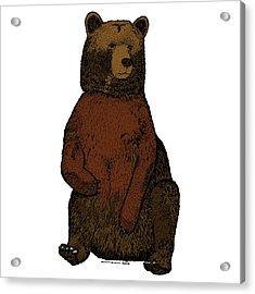 Sitting Bear - Full Color Acrylic Print by Karl Addison