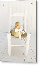 Sitting Pretty Acrylic Print by Amy Tyler