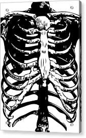 Skeleton Ribs Acrylic Print