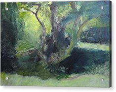 Sketch Of A Shady Glade. Acrylic Print by Harry Robertson
