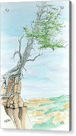 Sketchbook 055 Acrylic Print