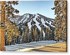 Ski Runs Acrylic Print