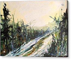 Ski Trail Acrylic Print by Linda King