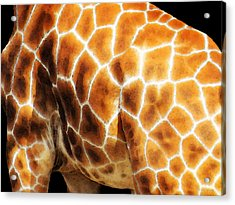 Skin Deep - Buy Giraffe Art Prints Acrylic Print