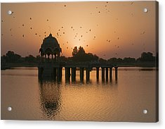 Skn 1372 Sunrise Flight Acrylic Print