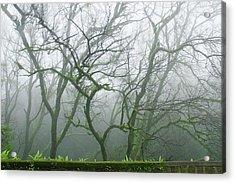 Skn 3720 Monsoon Landscape Acrylic Print