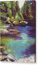 Skokomish River Acrylic Print by Mary McInnis