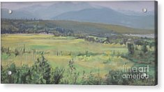 Skokomish Valley Acrylic Print by Terri Thompson