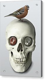 Acrylic Print featuring the painting Skull And Bird by Ivana Westin