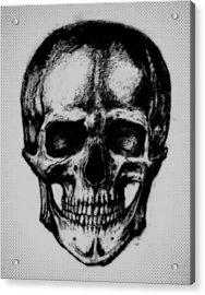 Skull In Shadow Acrylic Print