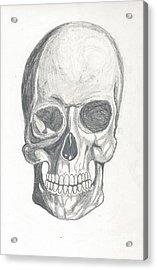 Skull Study 2 Acrylic Print