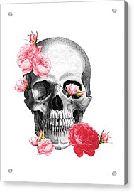 Skull With Pink Roses Framed Art Print Acrylic Print by Madame Memento