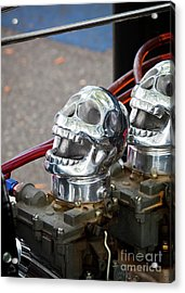 Acrylic Print featuring the photograph Skully by Chris Dutton