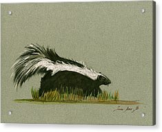 Skunk Animal Acrylic Print by Juan  Bosco