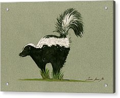 Skunk  Acrylic Print by Juan  Bosco