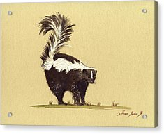 Skunk Watercolor Acrylic Print by Juan  Bosco