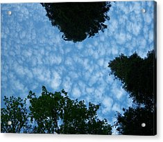 Sky Above Me Acrylic Print by Ken Day