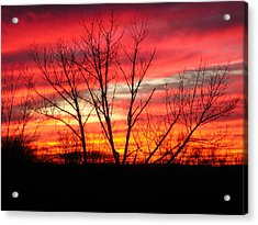 Sky Fire Acrylic Print by Ron Moses
