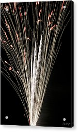 Sky Flowers Acrylic Print by Phill Doherty
