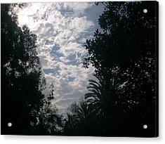 Sky Acrylic Print by Guillermo Mason