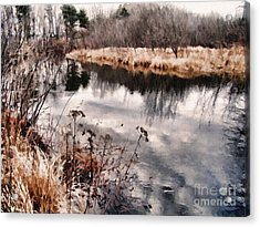 Acrylic Print featuring the photograph Sky Low by Betsy Zimmerli