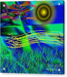 Sky Of Mind Acrylic Print